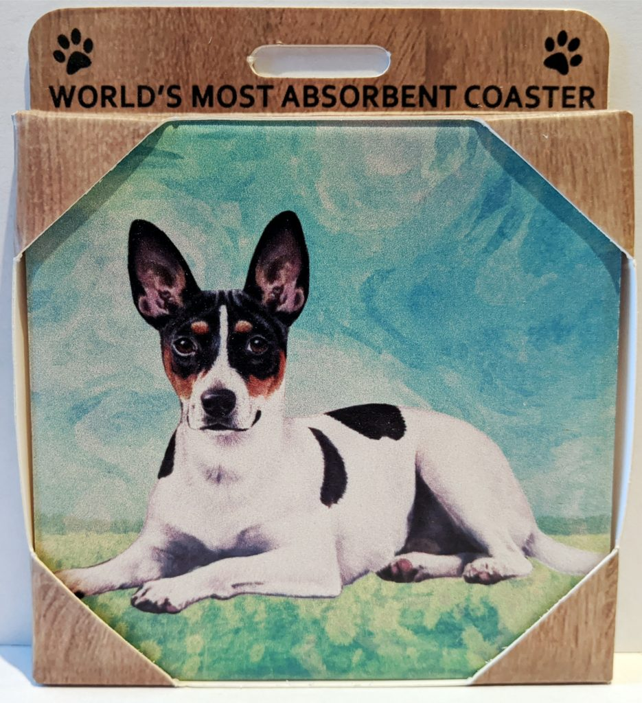 Dirty DISHWASHER MAGNET Dog TOY FOX TERRIER Clean